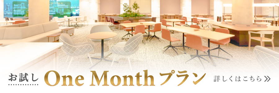 fabbit One Monthプラン